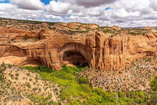 Navajo National Monument, Shonto - Tripadvisor