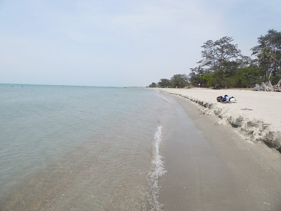 Casuarina Beach: Calm stretch of water