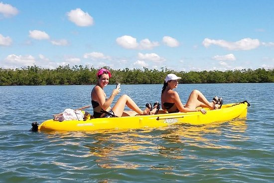 De 10 Beste Boottochten En Watersporten In Everglades City
