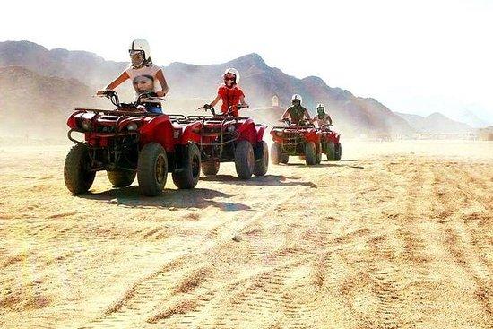 Safari di 3 ore con Quad Bike