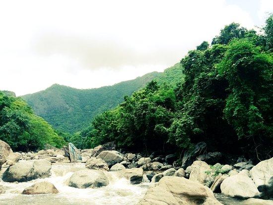 Virgin Valley