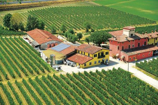 Azienda Agricola Pilandro