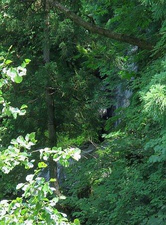 Tatsugami Waterfall
