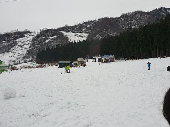 Ski ground. Just behind the hotel.
