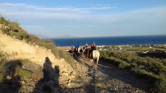 Kardamena Horse Riding Center