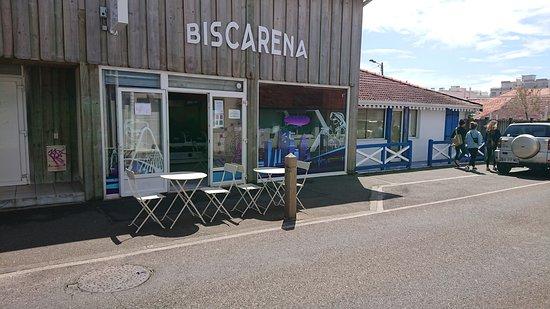 BiscArena