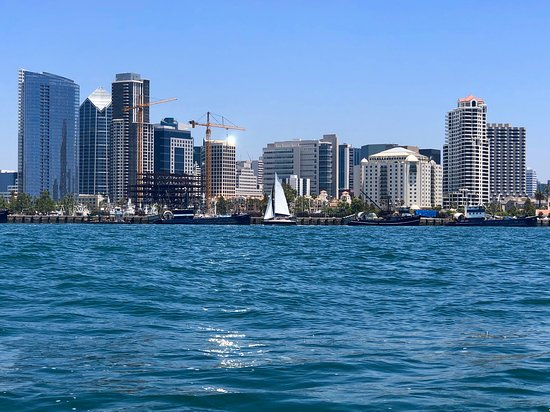 San Diego Harbor Speed Boat Adventure: SD's growing skyline from the water