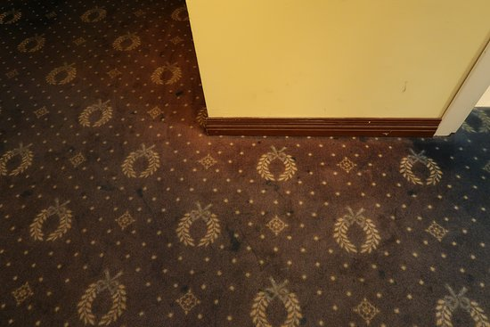 Hotel San Giorgio: Not camera flash, just faded carpet