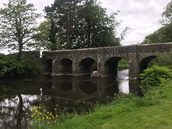 Antrim Castle Gardens: There's a small speaker near the wolfhound statue so make sure you push the button and listen to the wonderful voice of Liz Weir as she tells The story of Lady Marian and the wolfhound.   There's beauty all around the grounds with ancient trees and a lovely bridge and castle runs and a motte.