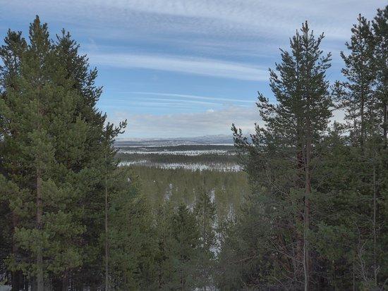 Sor-Varanger Municipality, นอร์เวย์: Pasvik