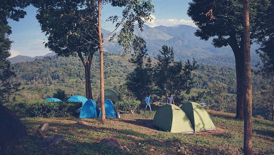 Trekking, Cycling And Camping Tour In Wayanad: 3