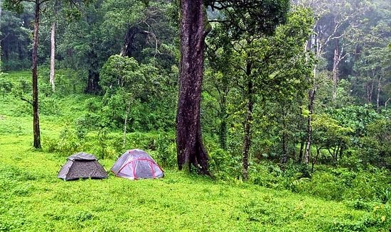 Trekking, Cycling And Camping Tour In Wayanad: 4