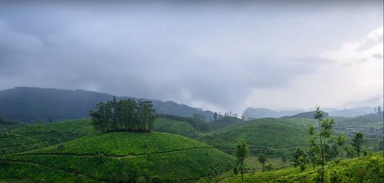 Trekking, Cycling And Camping Tour In Wayanad: 5