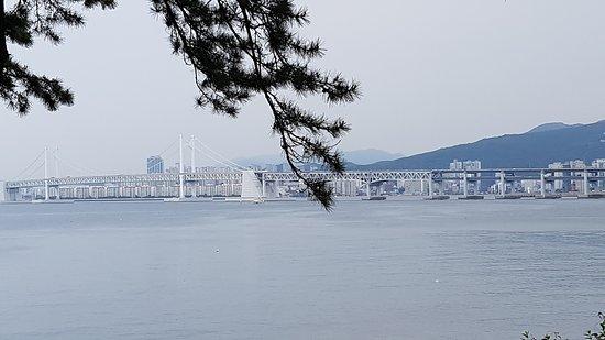Gwangandaegyo Bridge: 광안대교