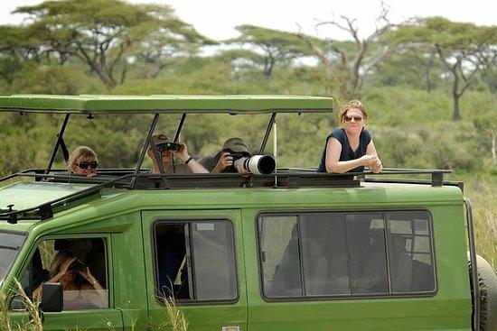 Afric Adict Safaris