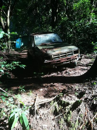Reserva Forestal Grecia Sector Bosque del Nino: old car