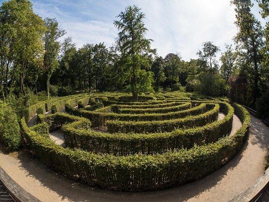 Park Schonbusch