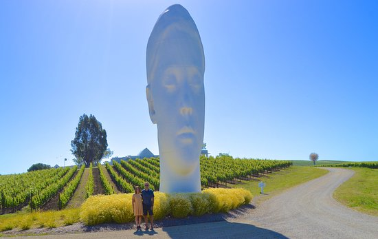 On a private Art & Wine Tour, we guide you to outstanding wineries and intriguing modern art collections in Napa   Sonoma.