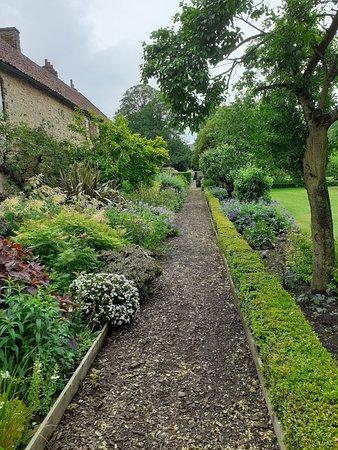 Garden view..