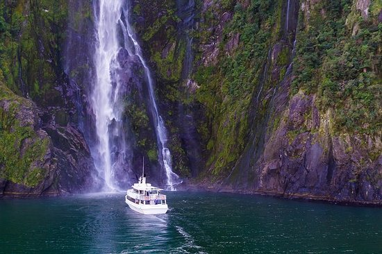 Milford Sound Tour & Cruise fra...
