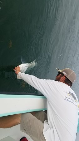 Best Tarpon fishing