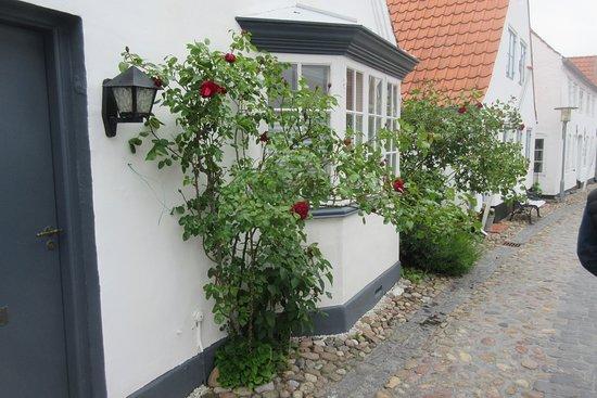 Uldgade