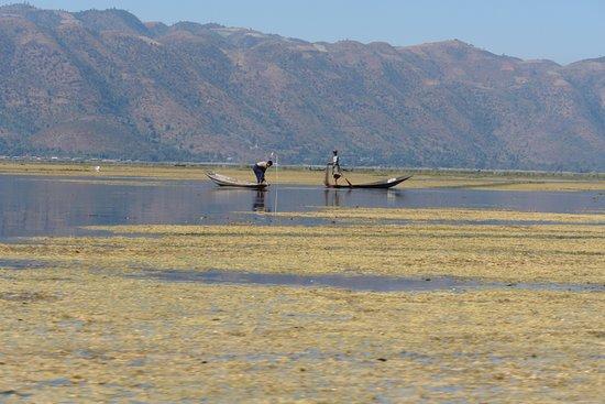 Inle Lake: Cartoline dal lago Inle, Birmania