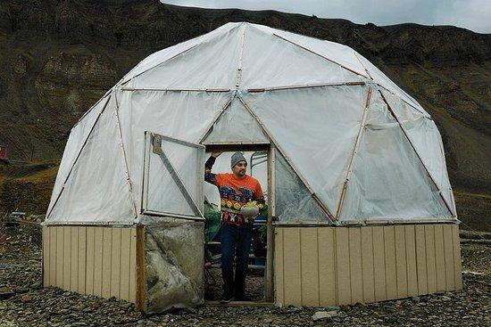 Visite de Longyearbyen et visite d'un...