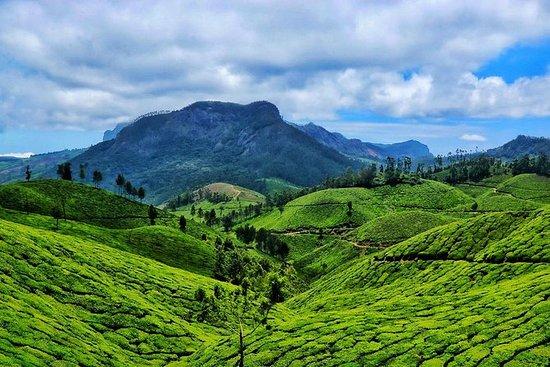 5 dager Kerala tur pakke -mini Kerala
