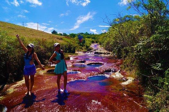 瓜达卢佩游泳洞全日私人游