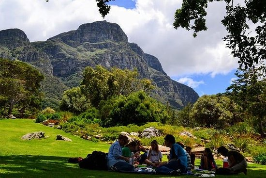 Table Mountain Kirstenbosch Cape Town...