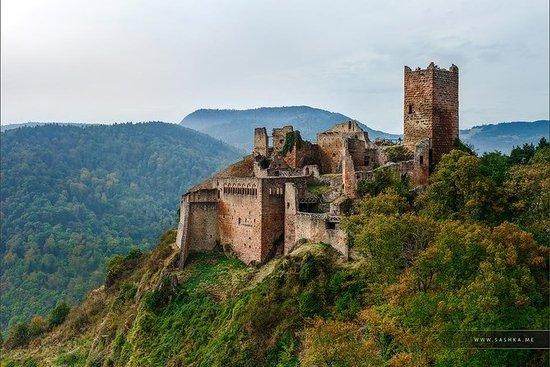 Dagstur fra Baden-Baden til Alsace...