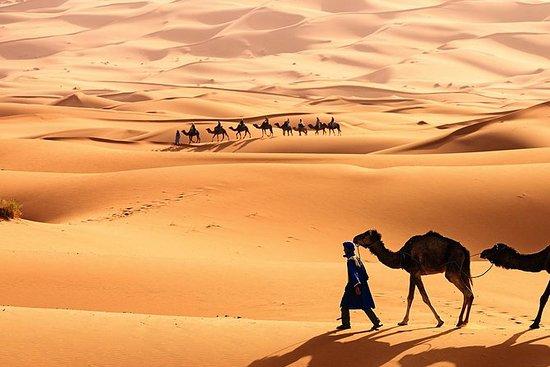 5天阿特拉斯山谷徒步旅行和Erg Chebbi撒哈拉之旅