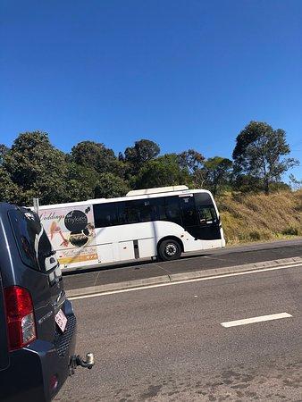 Mykies By The Bay: Mykies buss