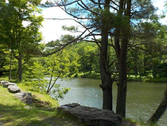 Salamanca, Estado de Nueva York: Science Lake