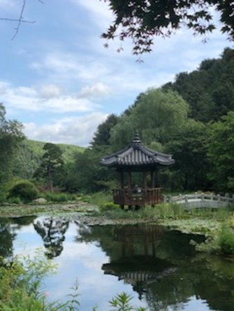 Nami Island, Petite France, Rail Bike and Garden of Morning Calm Tour: lovely view at Garden of Morning calm