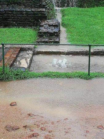 Province centrale, Sri Lanka: Sigiriya Water Garden