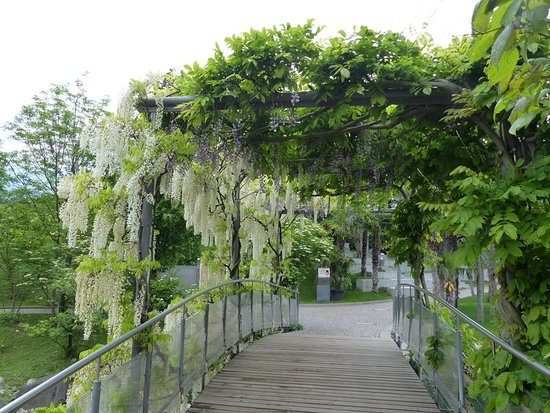 I Giardini di Castel Trauttmansdorff: Laubdach
