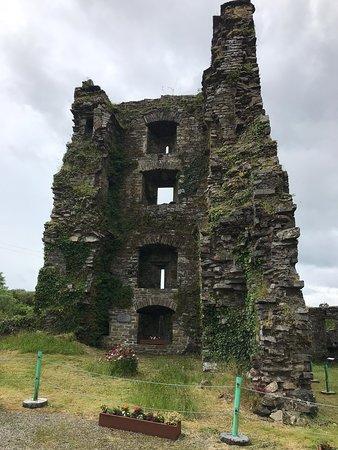 Carriganass Castle Photo