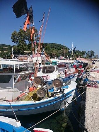 Captain Homer's Boat Trips: Port de pêcheurs