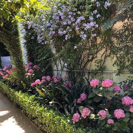 Un émerveillement ; j y ai atterri par hasard ; le palais et splendide, les jardins sont magnifiques et bien entretenus ;