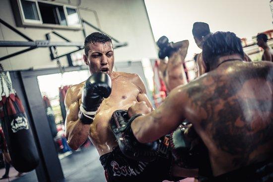 Elite Fight Club , Bangkok: Muay Thai