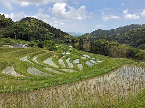 ‪Oyama Rice Terraces‬