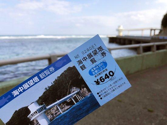 Katsuura Undersea Park: 海中展望塔チケット