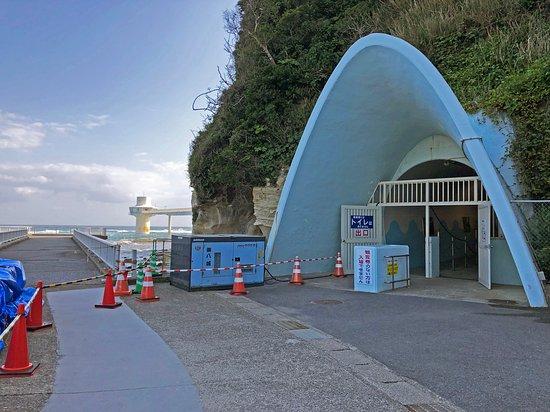 Katsuura Undersea Park: トンネル入口