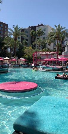 Flamingo-Beach Club Pool