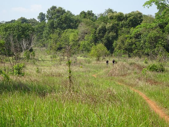 SpiceRoads Cycling: Wilds of Cambodia - Chi Phat Loop single track ride