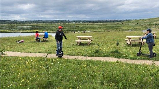 RSPB St Aidan's nature park: View