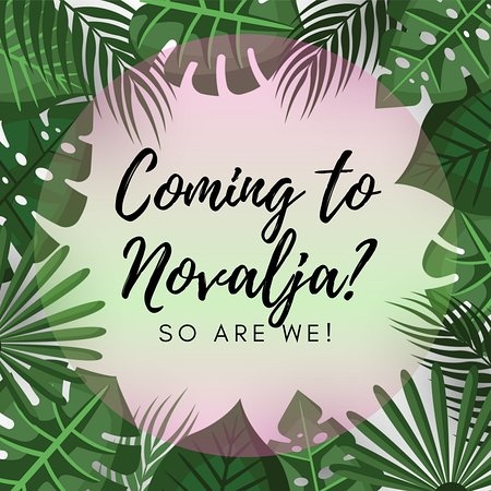 Yasss! BAR FOOD MOOD: Yasss! is a state of mind 😎🏝  If you're coming to Novalja this summer, make sure to stop by. 📍 Our opening date will be announced soon. 🤩🌴🤩