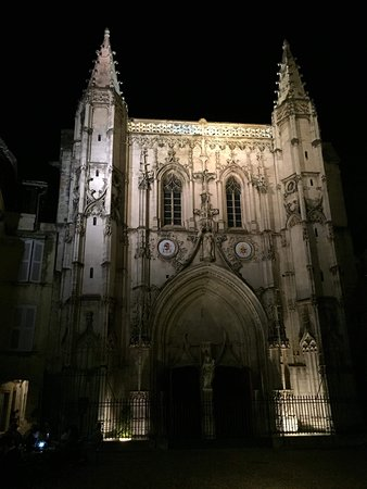 The nocturnal owl of the Pope: Night time walk
